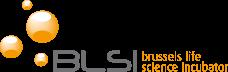 Logo BLSI